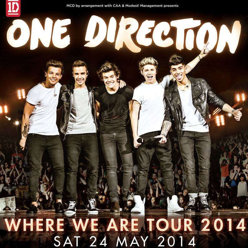 One Direction 2014